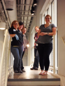 Meet the conservators and collections team!