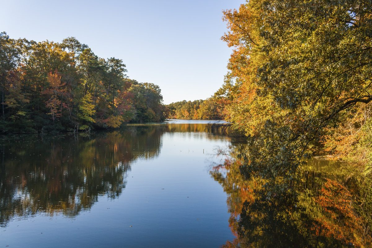 World Water Day – Monitoring the Water Quality of Lake Maury