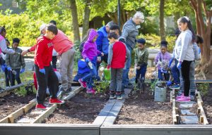 Third-graders from L.F. Palmers Elementary working in the Pollinator Garden at The Mariners' Museum Park.