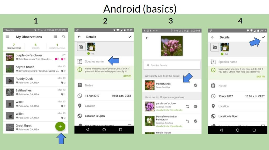 How to use iNaturalist on Android.