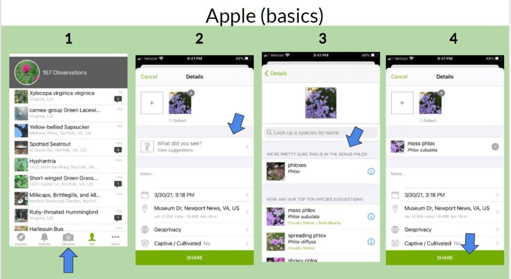 Going through steps of using the iNaturalist app