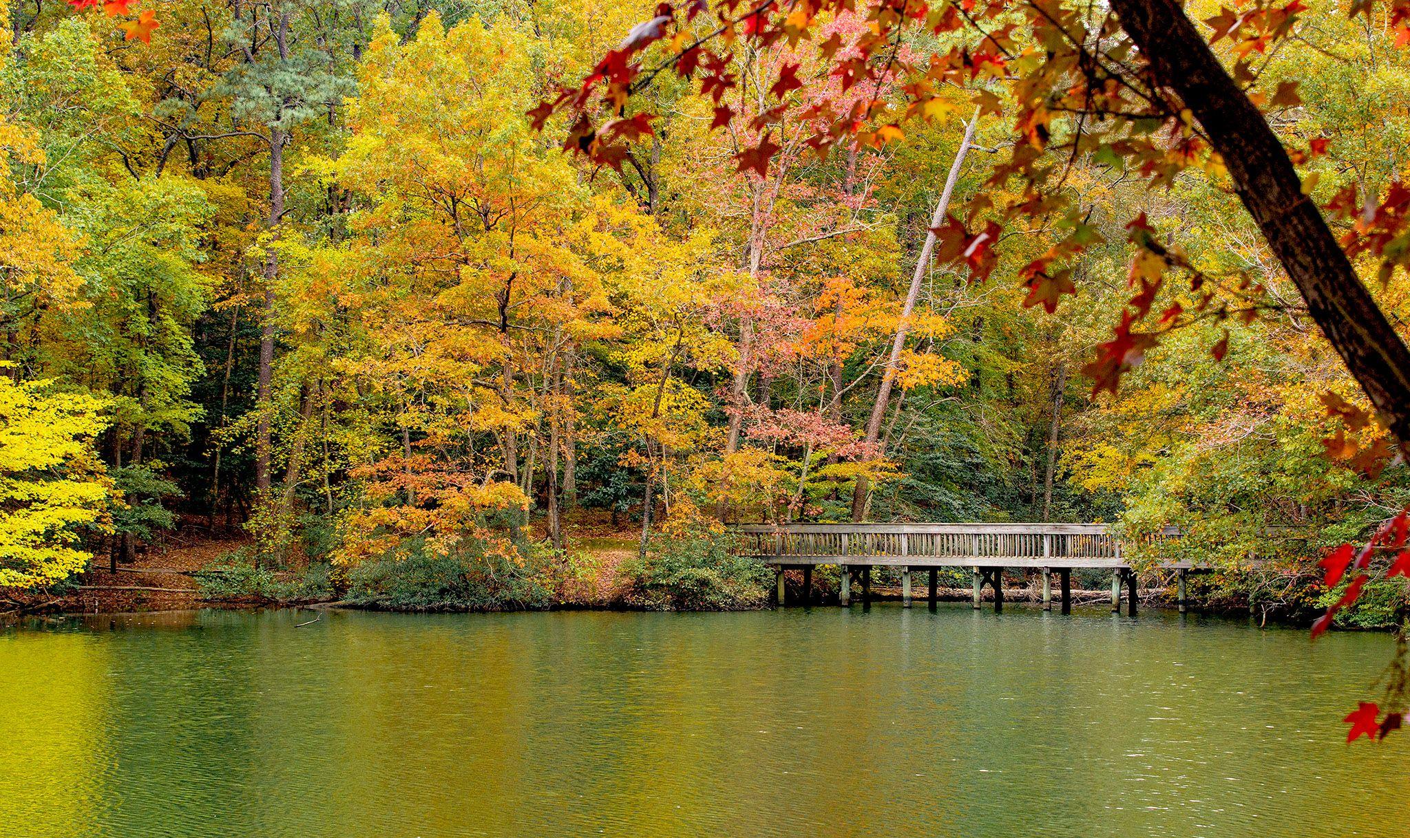 Peak leaf color in the Park