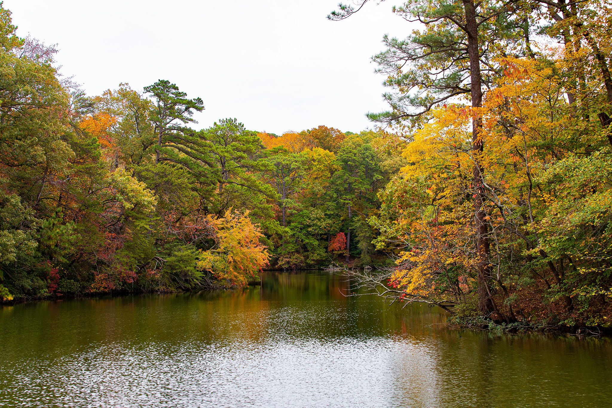 Partial color in the Park