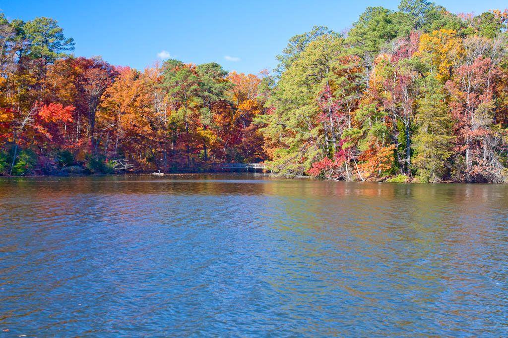 Near peak color change in the Park